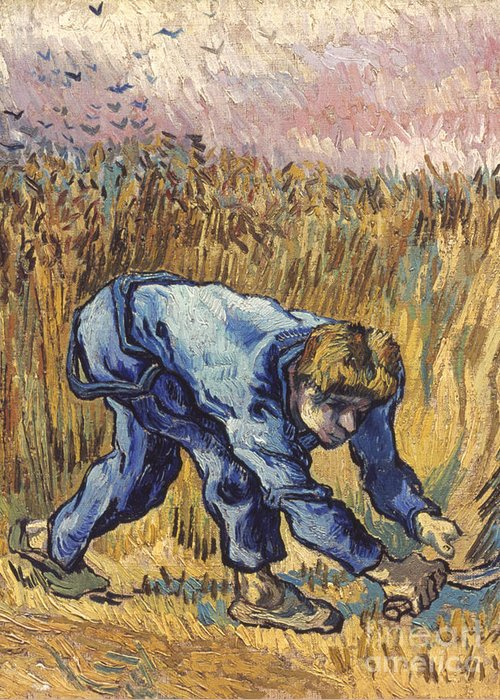1889 Greeting Card featuring the photograph Van Gogh: The Reaper, 1889 by Granger