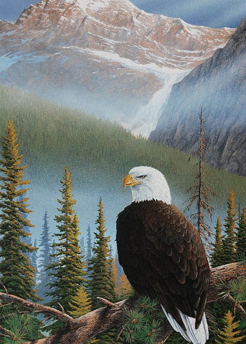 Eagle Greeting Card featuring the painting Vantage Point by Jake Vandenbrink