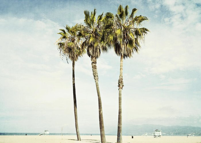 Venice Beach. Palm Trees Greeting Card featuring the photograph Venice Palms by Bree Madden