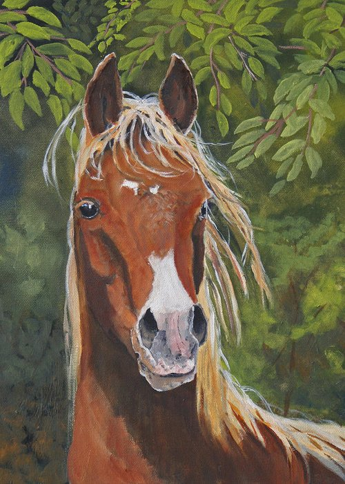 Horse Greeting Card featuring the painting Victory by Heather Coen