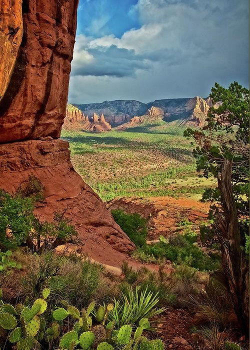 Nature Greeting Card featuring the photograph View From A Vortex, Cathedral Rock, Sedona, Arizona by Zayne Diamond Photographic