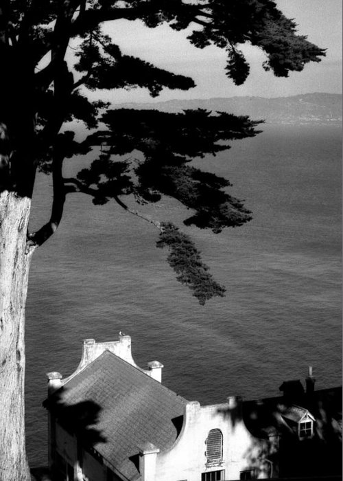 Alcatraz Greeting Card featuring the photograph View From Alcatraz by Todd Fox