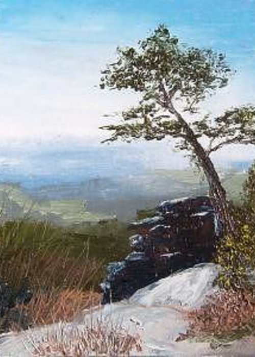 Landscape / Nature / Blue Ridge Mountains Greeting Card featuring the painting View From Pilot Mountain by Tami Booher
