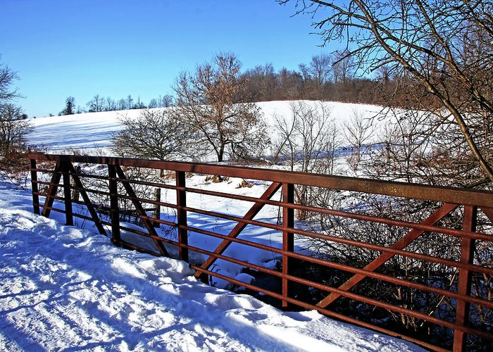 Kissing Bridge Greeting Card featuring the photograph View From The Bridge by Debbie Oppermann