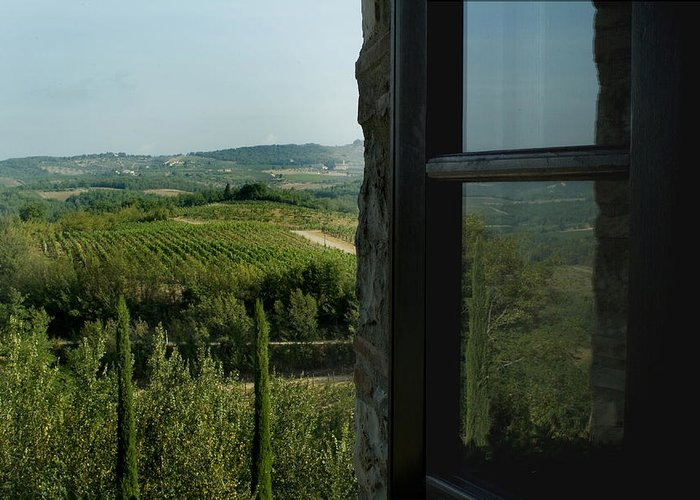 Windows Greeting Card featuring the photograph Vineyards Of Chianti Viewed by Todd Gipstein