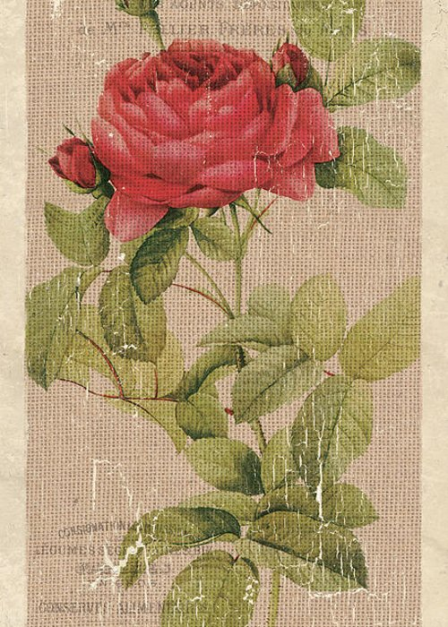 Bloom Greeting Cards