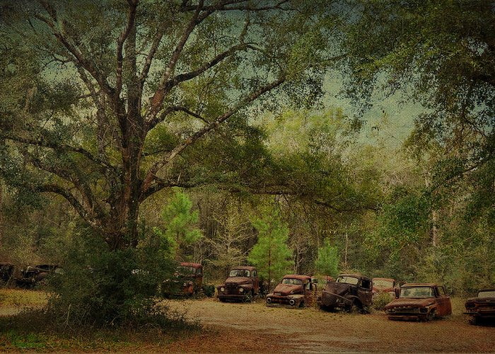 Harvey Trucks Greeting Card featuring the photograph Vintage Harvey Trucks In Northwest Florida by Carla Parris