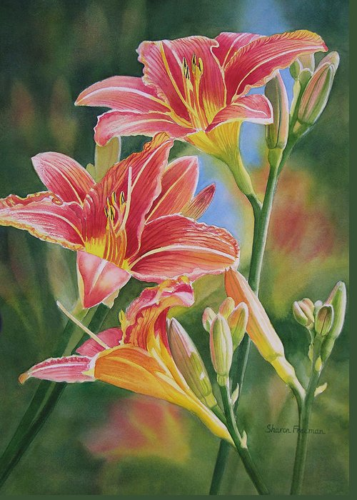 Red Lily Greeting Cards