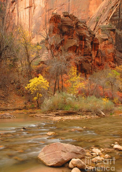 Utah Greeting Card featuring the photograph Virgin River At The Narrows by Dennis Hammer