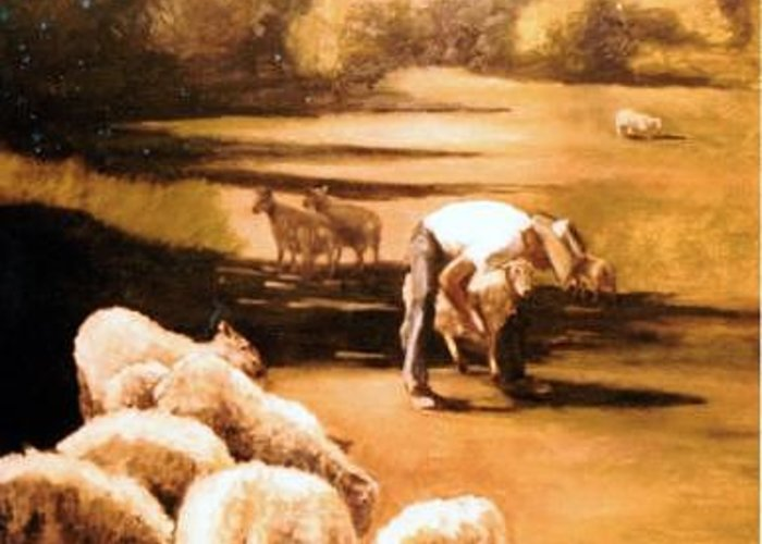 Sheep Landscape Cowboy Greeting Card featuring the painting Wade With Sheep by Helen Hickey