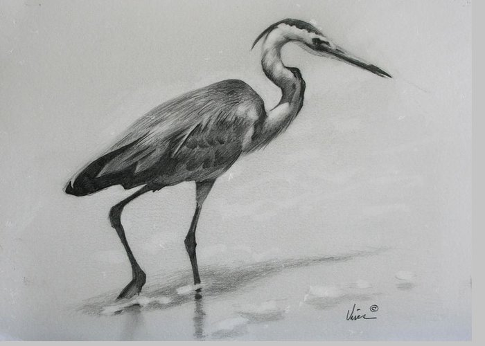 Graphite On Paper Greeting Card featuring the drawing Wader by Michael Vires