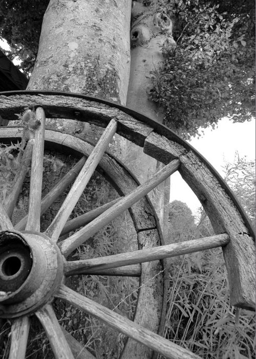 Wagon Wheels Greeting Card featuring the photograph Wagon Wheels by Robert Lacy