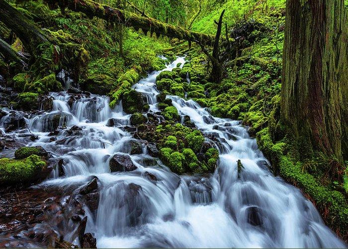 Waterfalls Greeting Cards
