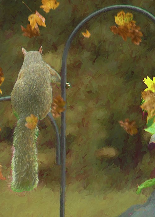 Squirrel Greeting Card featuring the photograph Waiting For Friends by Ericamaxine Price