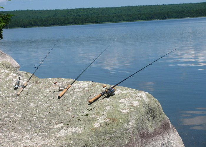 Fishing Poles Greeting Card featuring the photograph Waiting by Tammy Bullard