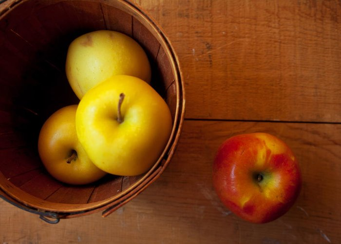 Apples Greeting Card featuring the photograph Waiting by Toni Hopper