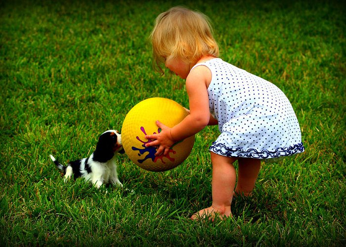 Baby Greeting Card featuring the photograph Wanna Play Ball by Susie Weaver