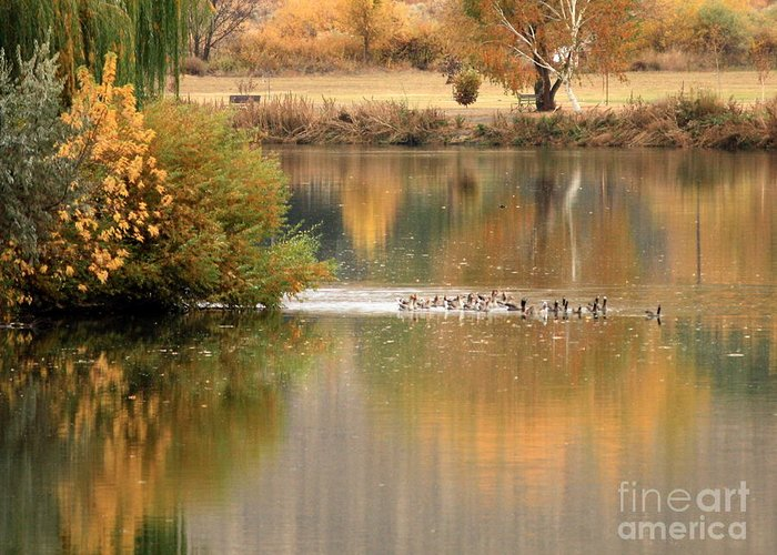 Prosser Greeting Card featuring the photograph Warm Autumn River by Carol Groenen