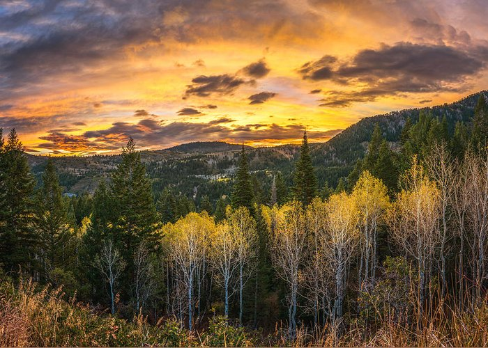 American Fork Canyon Greeting Cards