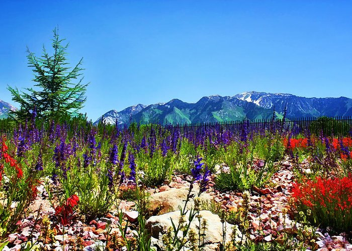 Wasatch Mountains Greeting Card featuring the photograph Wasatch Mountains In Spring by Tracie Kaska
