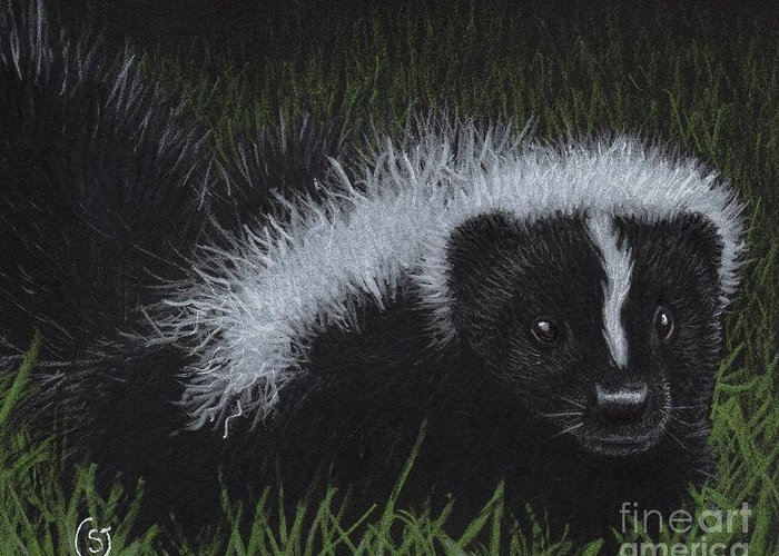 Skunk Greeting Card featuring the painting Watch Out - There's A Baby Skunk In The Grass by Sherry Goeben