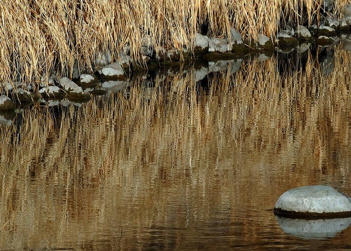 Reflections Greeting Card featuring the photograph Water Colored by Steven Milner