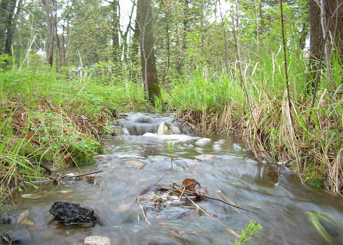 Water Greeting Card featuring the photograph Water Flows After A May Rain by Kent Lorentzen