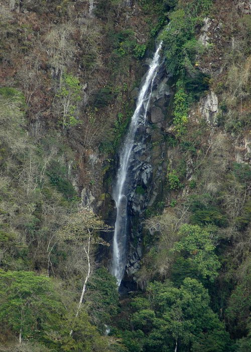 Tropics Greeting Card featuring the photograph Waterfall In The Intag 3 by Teresa Stallings