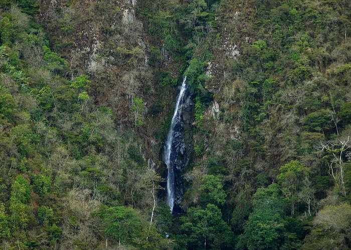 Tropics Greeting Card featuring the photograph Waterfall In The Intag 5 by Teresa Stallings
