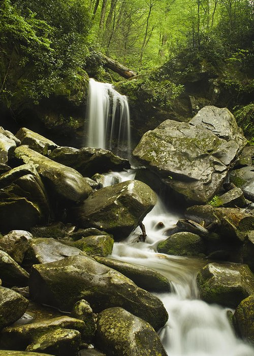 Grotto Falls Greeting Card featuring the photograph Waterfall In The Spring by Andrew Soundarajan
