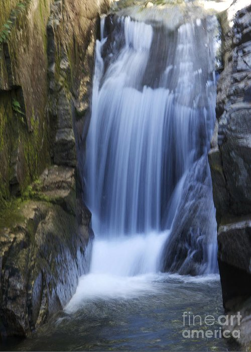 Waterfall Greeting Card featuring the photograph Waterfall In The Woods by Michael Mooney