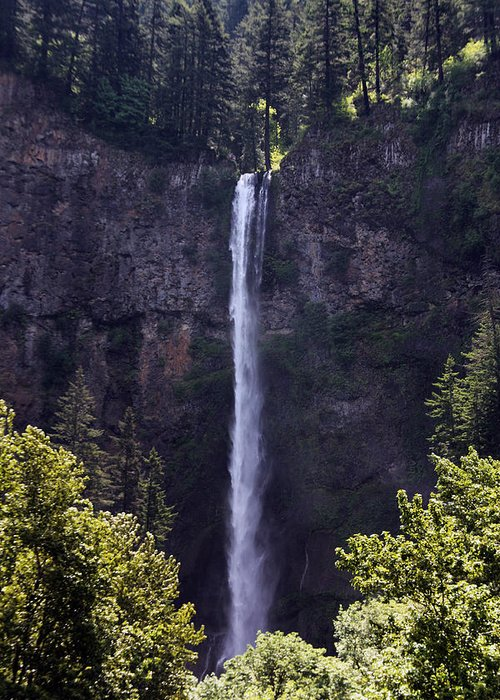 Washington State Greeting Card featuring the photograph Waterfall In Washington by Joanne Coyle