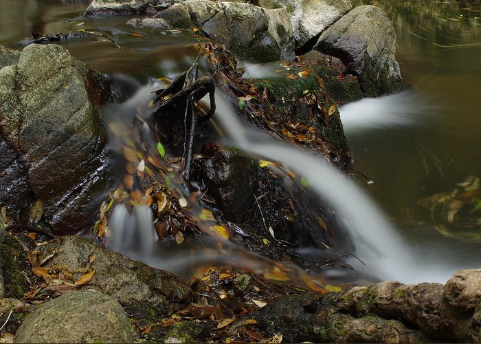 River Greeting Card featuring the photograph Waterfall by M D G