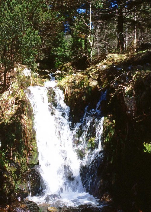 Forest Greeting Card featuring the photograph Waterfall by Mike Bambridge