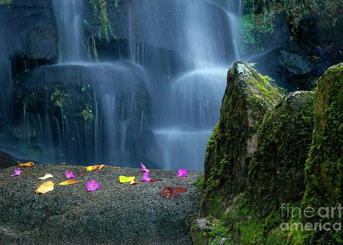 Autumn Greeting Card featuring the photograph Waterfall02 by Carlos Caetano