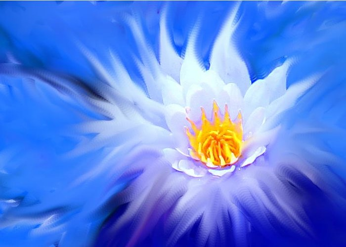 Blue Greeting Card featuring the digital art Waterlillies Transformed by Ian MacDonald