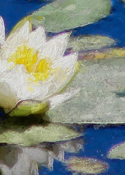 Pond Greeting Card featuring the photograph Waterlily Reflections by Modern Art