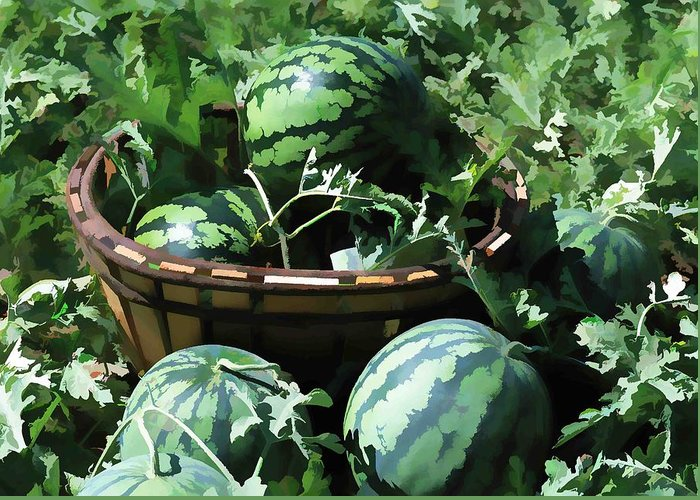 Watermelon Greeting Card featuring the painting Watermelon In A Vegetable Garden by Lanjee Chee