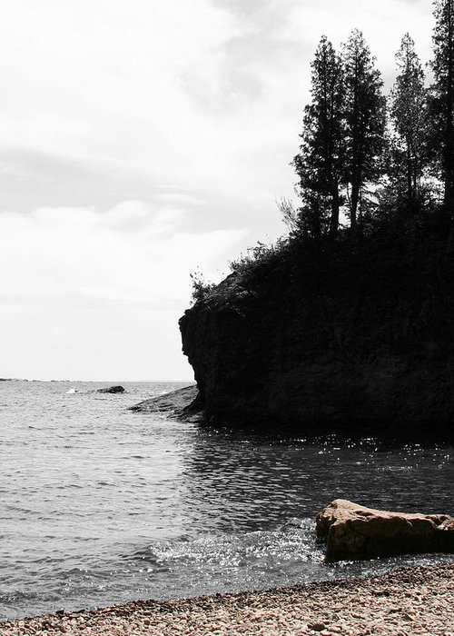Water Greeting Card featuring the photograph Water's Edge by Dylan Punke