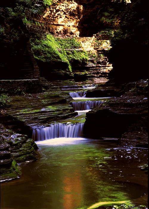 Gorge Greeting Card featuring the photograph Watkins Glen Gorge In Summer by Roger Soule