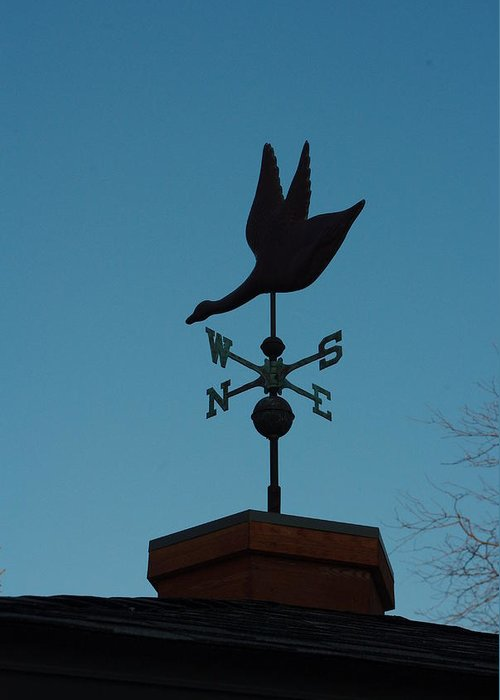 Weather Vane Greeting Card featuring the photograph Weather Vane by Alice Markham