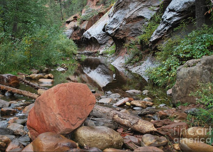 West Fork Trail River And Rock Vertical Sedona Arizona Oak Creek Canyon Wall Water Tree Bush Brush Leaf Pine Reflect Reflection Greeting Card featuring the photograph West Fork Trail River And Rock Horizontal by Heather Kirk