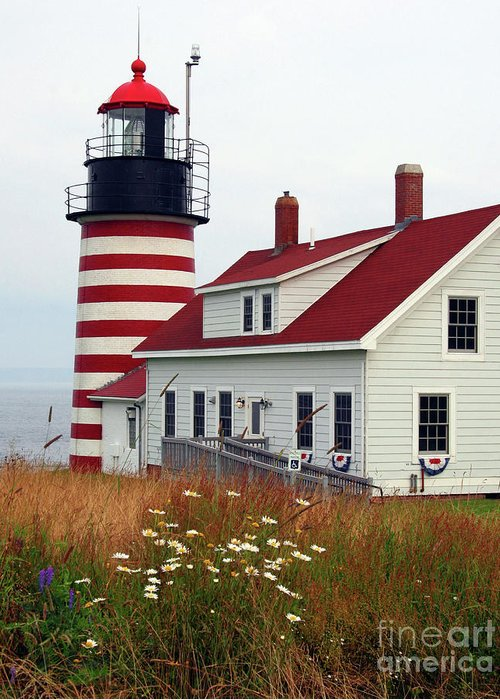Eastport Maine Greeting Card featuring the photograph West Quoddy Head Light by Brenda Giasson