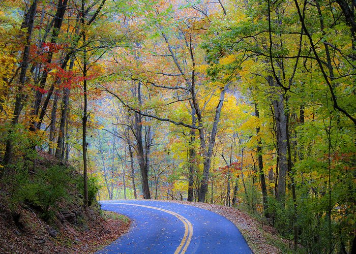 Fall Greeting Card featuring the photograph West Virginia Country Road by Teresa Mucha