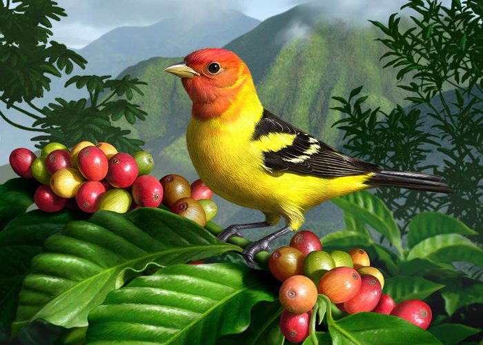 Bird Greeting Card featuring the digital art Western Tanager by Jerry LoFaro