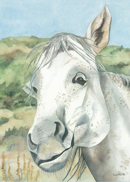 Horse Pictures Greeting Card featuring the painting What Was The Question by Kimberly Lavelle