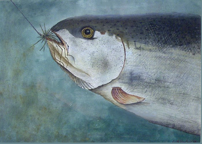 Fish Greeting Card featuring the painting What's For Dinner by Scott Plaster