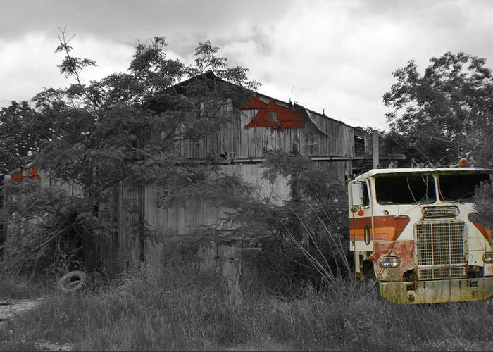 Truck Greeting Card featuring the photograph When Nature And Machines Collide by Greg Sharpe