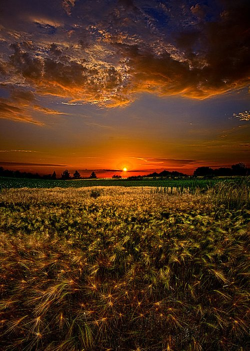 Horizons Greeting Card featuring the photograph When Time Stood Still by Phil Koch