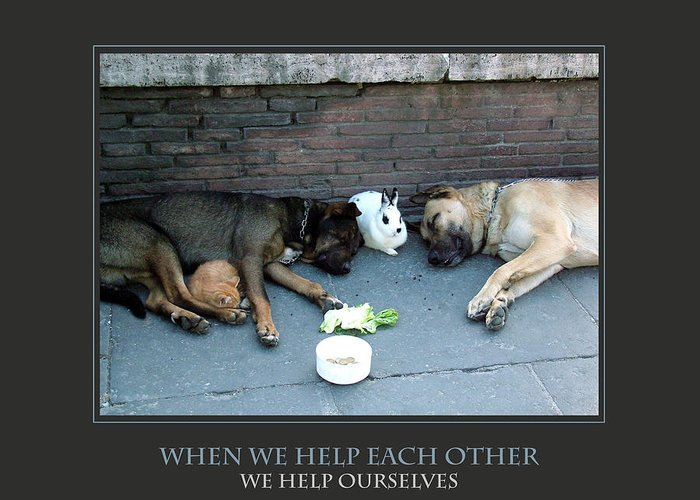 Motivational Greeting Card featuring the photograph When We Help Each Other by Donna Corless